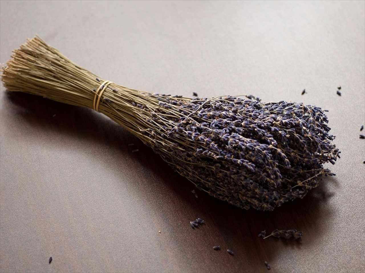 Lavenderの安眠 - フランス産ラベンダーのポプリ(生活の木)